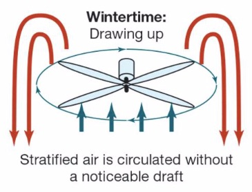 Why You Should Turn Your Ceiling Fan Direction To Clockwise In The Winter